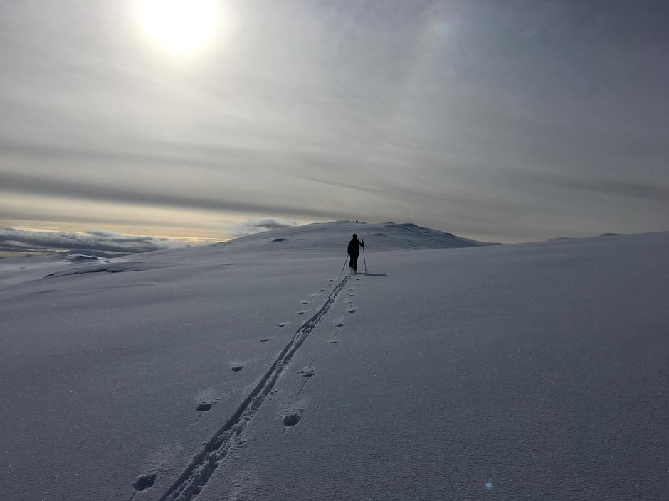 Lørdag 4.3: På vei til Bergsbukken (1190 moh) i Bergsdalen. Fine snøforhold.