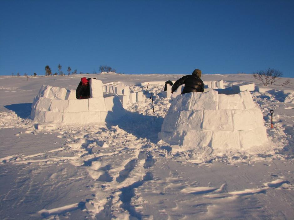 Du trenger bare spade og snøsag (ev grovtannet grensag) på min 25 cm for å lage iglo.