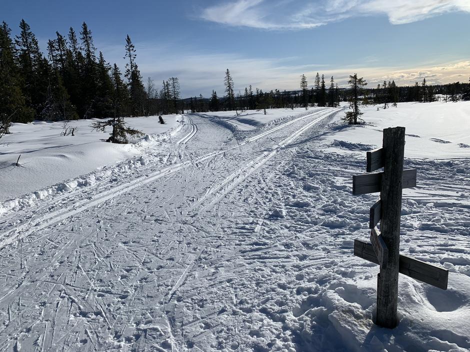 Vi anbefaler dagsturer i åpen natur på ski eller beina