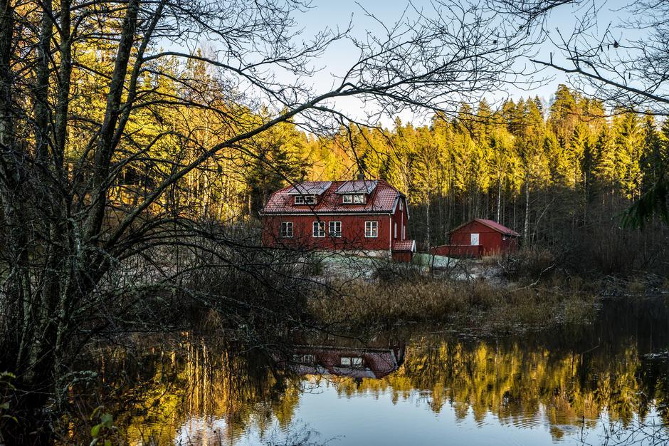 Eikedalen i Eikedalsmarka.