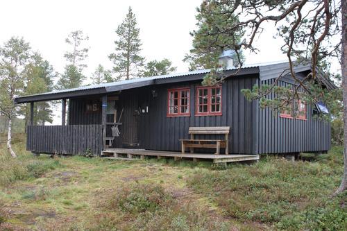 NTT søker hyttevakt på Kvitfjellhytta og Prestøyhytta i sommer