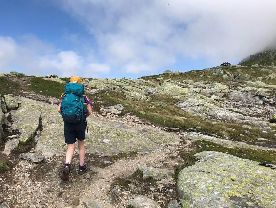 Mandag 28.6: Stikryss Breidablik - Skrott (østover) ved hytte (1100 moh).