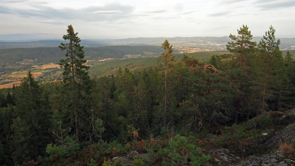 Utsikt mot Veme og Oppenåsen.