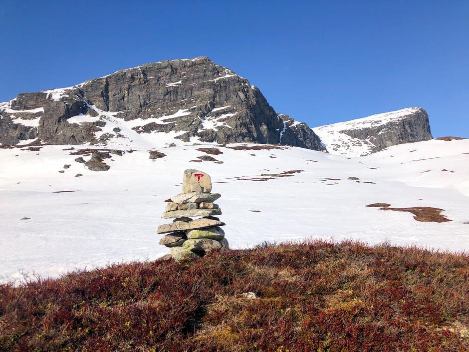"""Et sikkert vårtegn - de røde """"T""""-ene som titter frem etter en lang vinter under snøen (her med Store Nup i bakgrunnen)"""