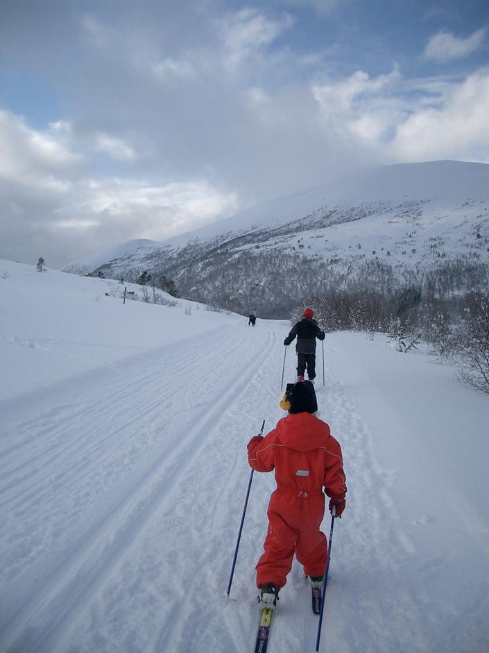 På ski ved Langdalsbu, Skaret