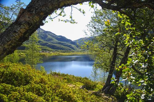 Flott beliggenhet ved Aurdalsvatnet