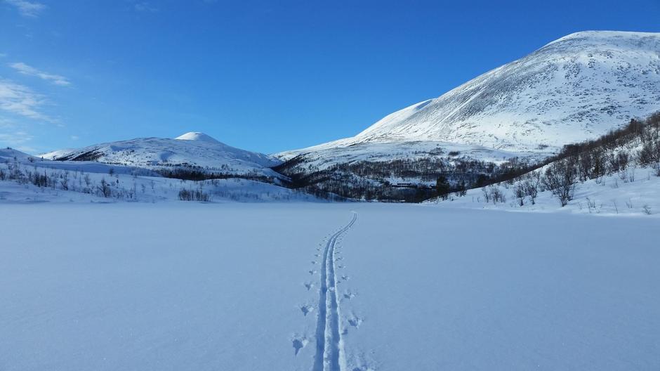 Inn mot Bjørnhollia den 5. mars.
