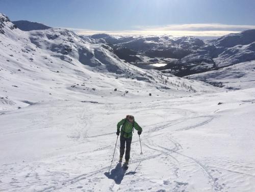 Fin tur til Steinegga