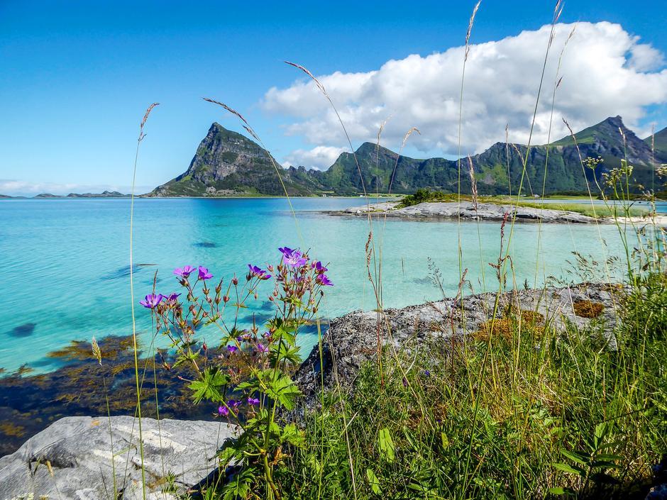 PARADISISK: Engeløya er en av Nordlands mange naturperler.  Her finnes også  flere spennende fornminner. Øya var høvdingsete i vikingtida,                   og i 1942 bygde tyskerne kystfestningen Batterie Dietl.