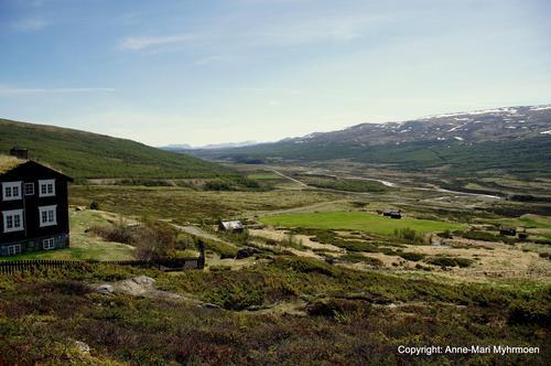 Utsikt fra Grimsdalshytta