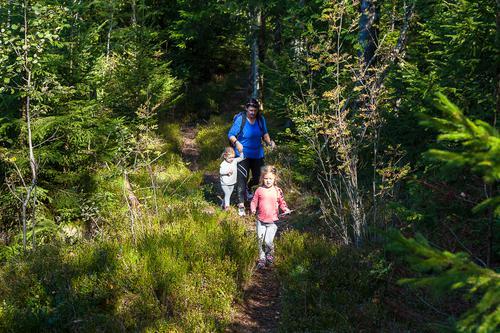 Noen av Østfolds fineste turstier