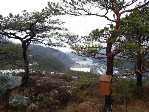 Frishatten, utsikt austover mot Solheimsvatnet