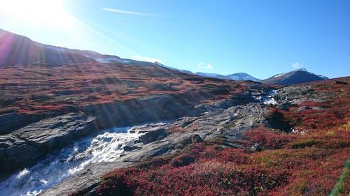 På vei til Pyttbua i Tafjordfjella i oktober. Så vakre farger!