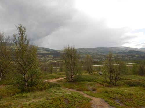 På veg fra Hjerkinn stasjon til Hagaseter