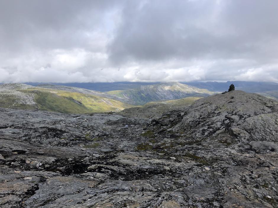 Høgevarde mellom Volahytta og Torvedalshytta