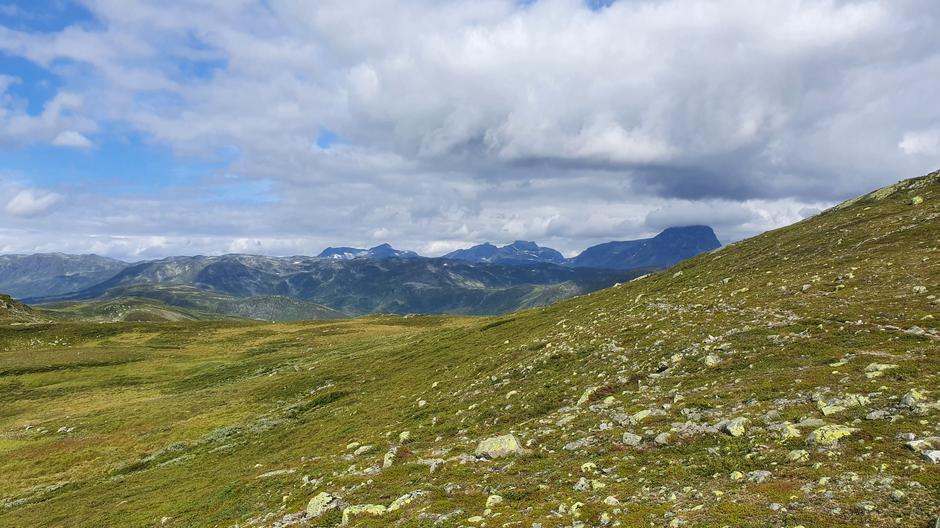 Flott utsikt mot Jotunheimen.