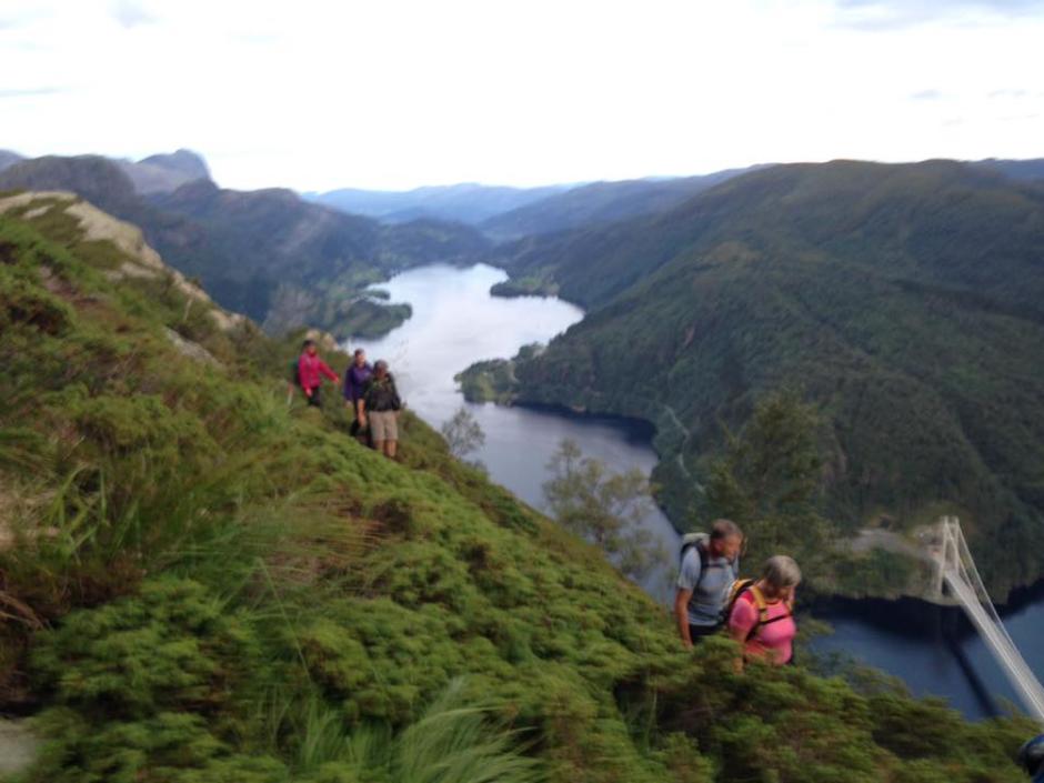 Flott utsikt nedatt til Dalsfjordbrua