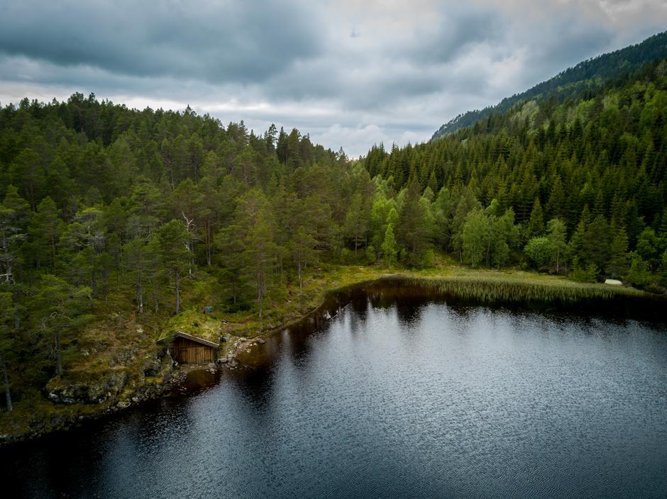 Trollstua ligger ved Bjønnavatnet, her er det flotte fiske og bademuligheter.