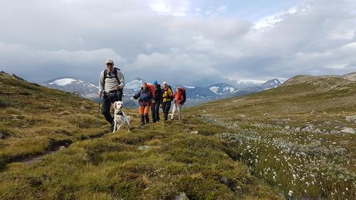 Tafjordfjella 23. - 25. august 2019