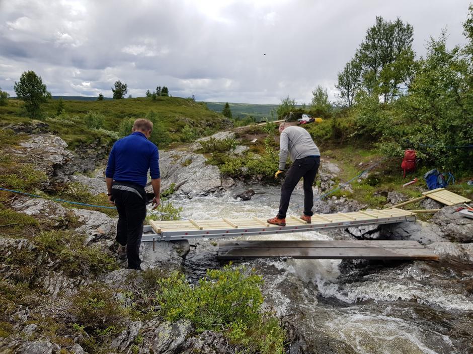 Arne og Torkjell i arbeid