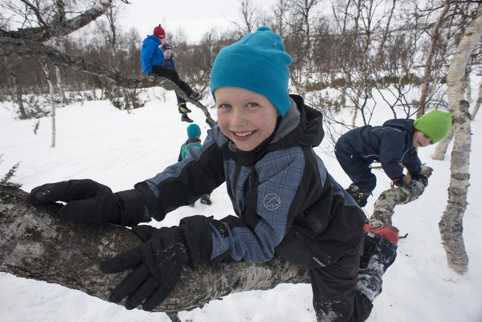 HØYT HENGER DE: Når foreldrene ta pause og drikker bålkaffe, tar det ikke lang tid før Erlend på 6 år og de andre ungene samles i naturens eget klatrestativ – ei gammel fjellbjørk.
