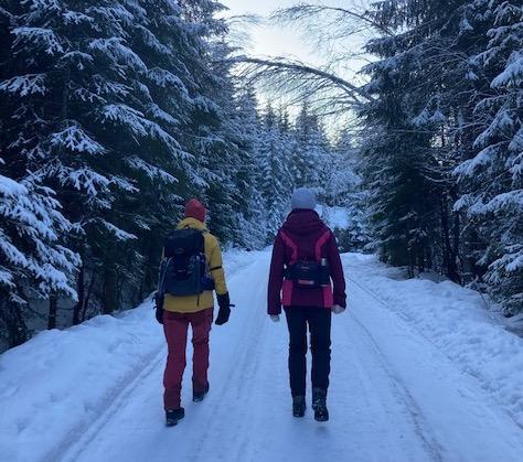 Skogsbilveier er fine å gå på vinterstid