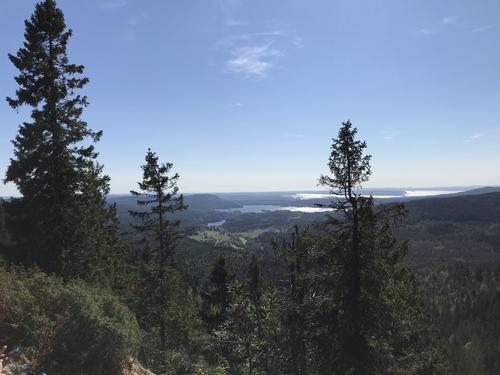 utsikt fra Gaupekollen