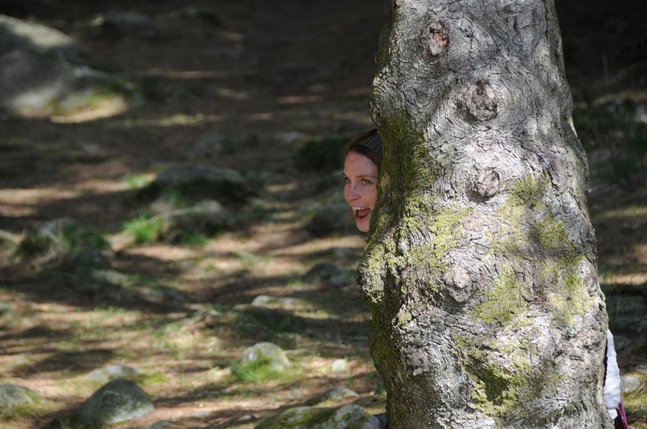 Trollet titter fram bak treet.