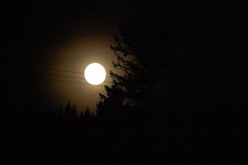 """Helnote på notelinjer - """"måneskinnssonaten"""" - månen på strømledningen"""