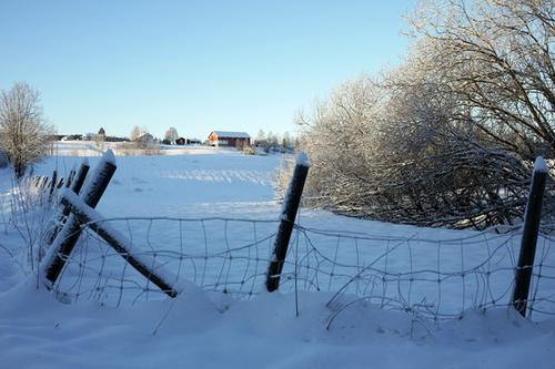 Vinter på Simostranda