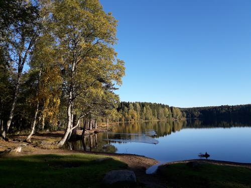 Sognsvann i september.