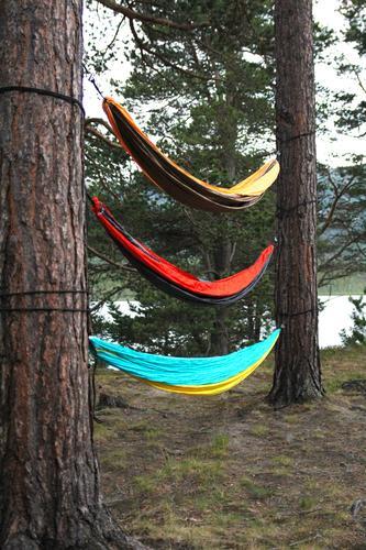 Hengekøyeseng. Bildet er tatt på Lesjaskog. For å komme i den øverste hengekøya må man klatre opp. God natt =)