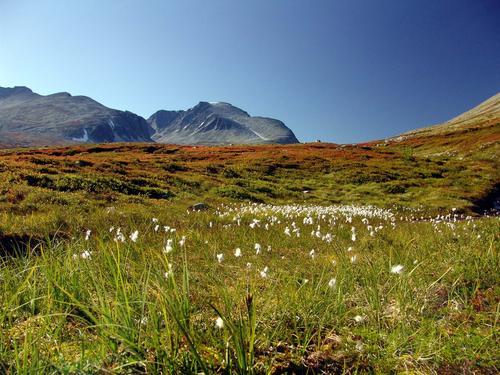 Rondane. Foto:  Finn Grove-Knutsen