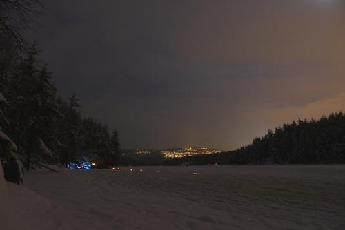 Natt i naturen - i iskongens rige