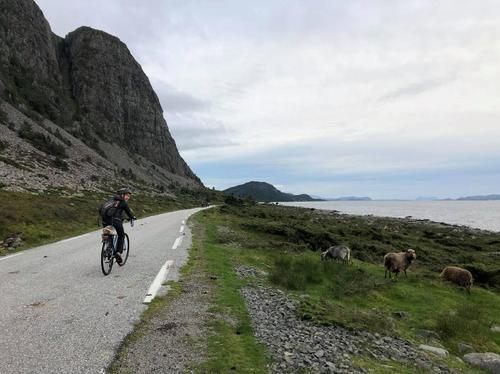 Sykkeltur frå villevika til Botnane, august 2018