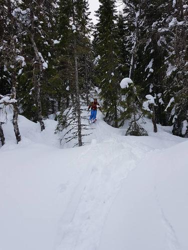 Kursene du kan ta med ski på beina