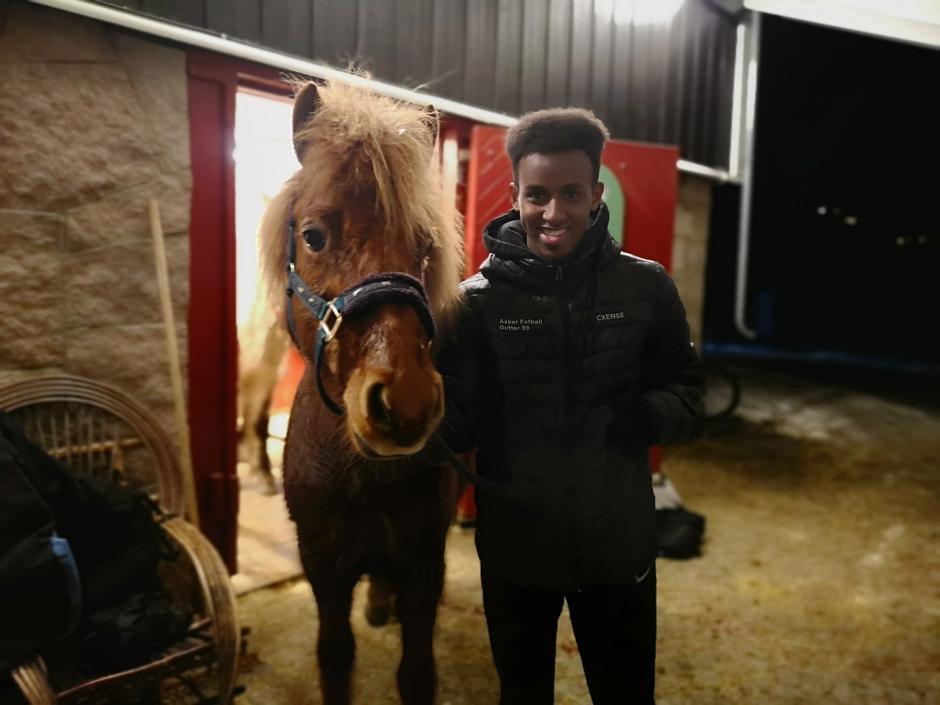 Mohammed og hans hest for kvelden