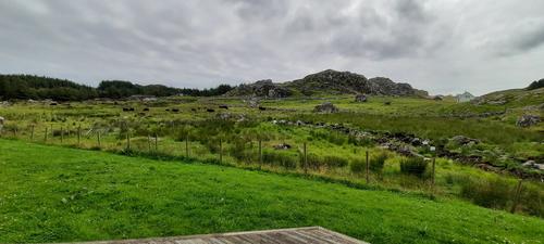 Utsikt fra terrassen. Flott natur på Utsira!