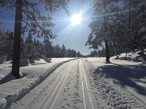 Fra skituren Stryken-Sognsvann