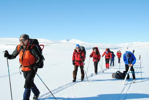 Rondane. foto: Tine Mjølnerød
