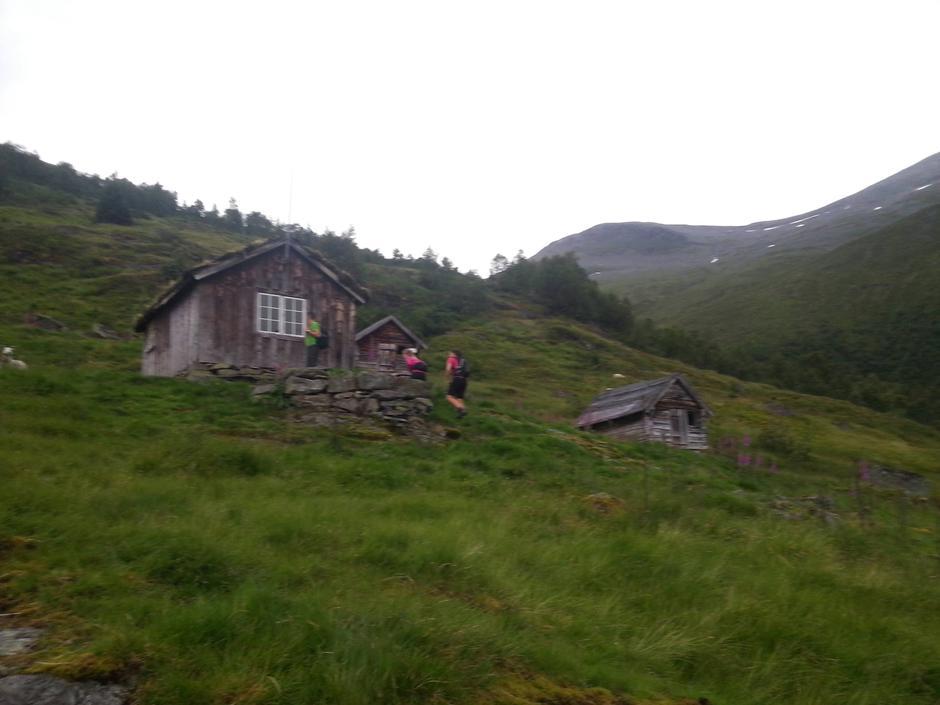 27.07.2016 - Lohøgesetra
