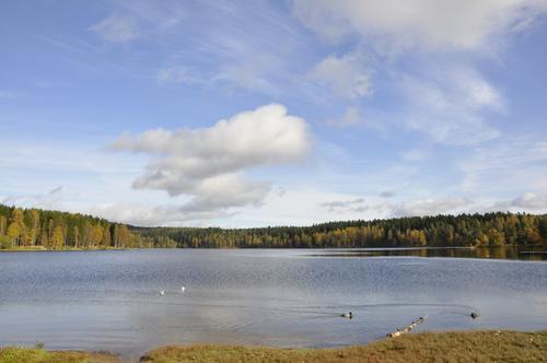 Sognsvann Foto: DNT Oslo og Omegn