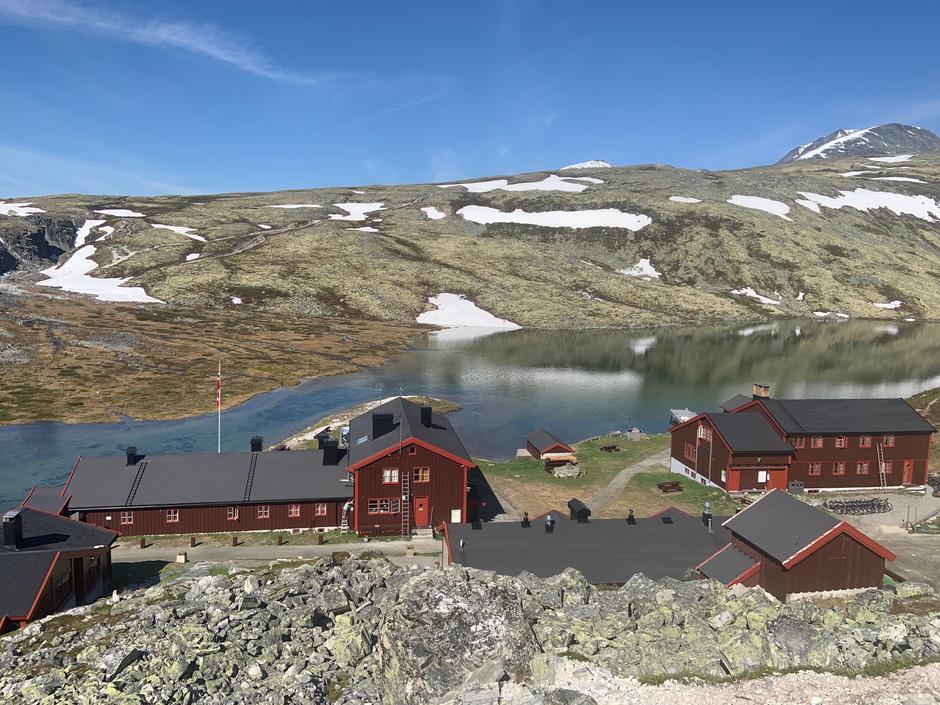 Sommeren har kommet til Rondane. Rondvassbu 21.06.