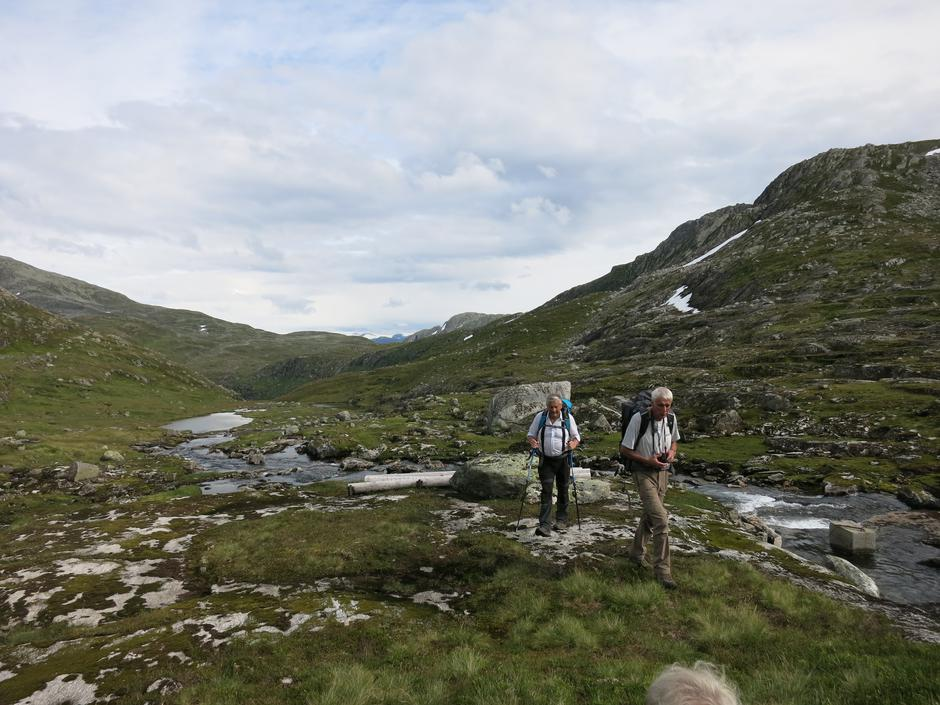 Johan og Harald i Vetledalen