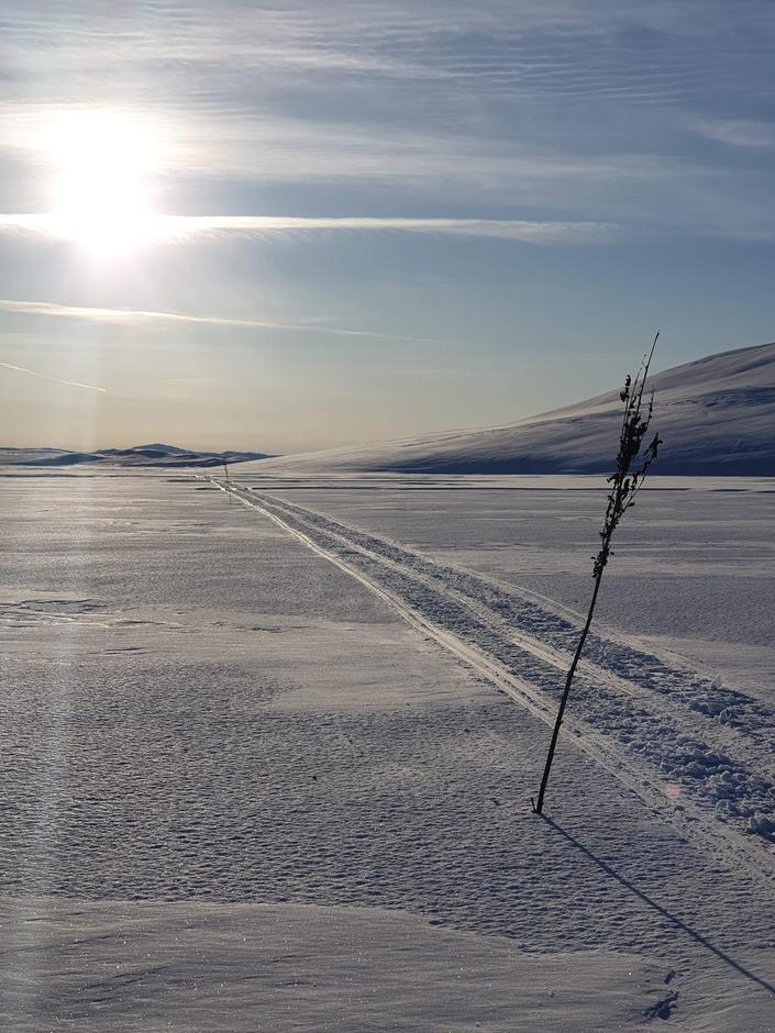 ÅÅÅÅÅ, det blir ikke finere enn dette vell? Bildet er fra Haukeliseter på vei til Holmavatn.