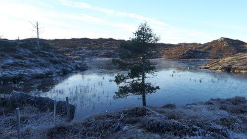 Tjørnasteinsvatnet i vinterdrakt