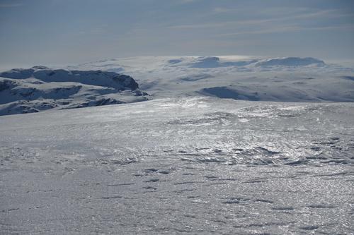 Utsikt mot Hardangerjøkulen fra toppen av Øykjafonn.