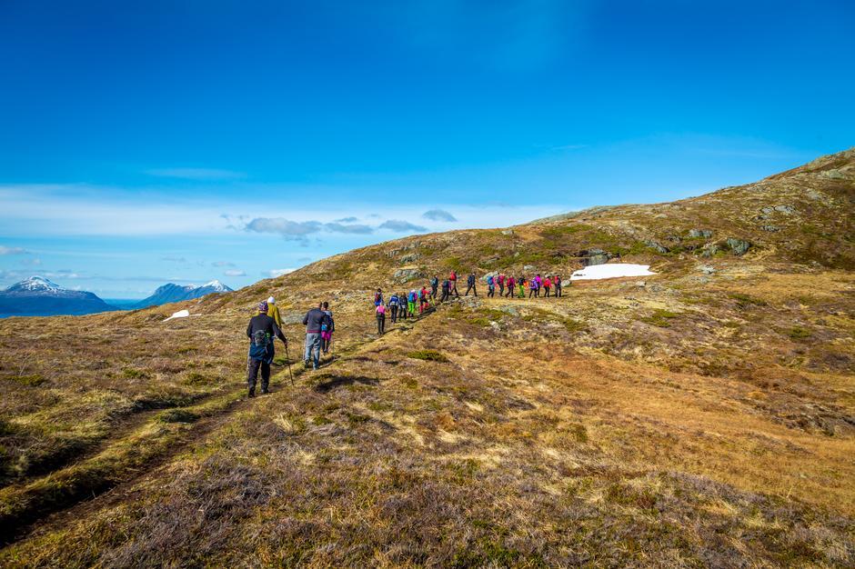 Snart på toppen av Fløystadfjellet.