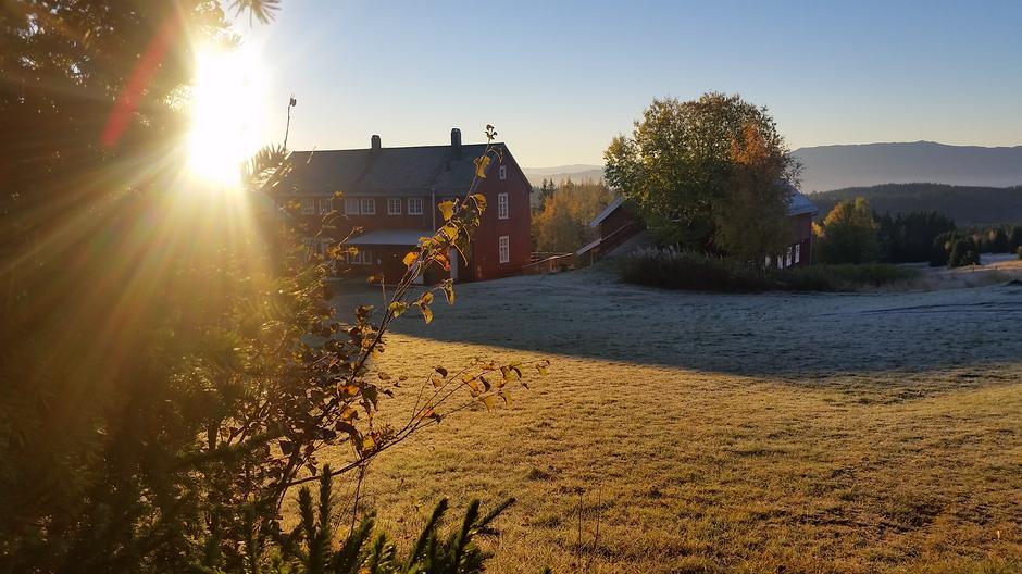 Høstmorgen på Rønningen