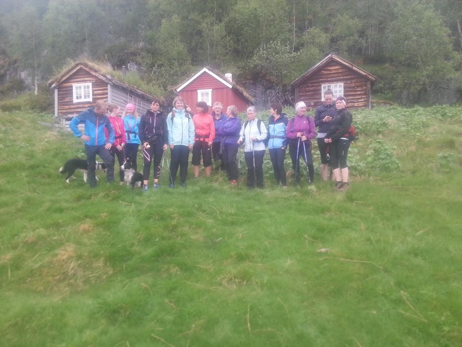 01.06.16 - Onsdagstur Melheimsetra / Solheimsetra. Flott tur i lett regnver med 16 personar og 3 hundar.